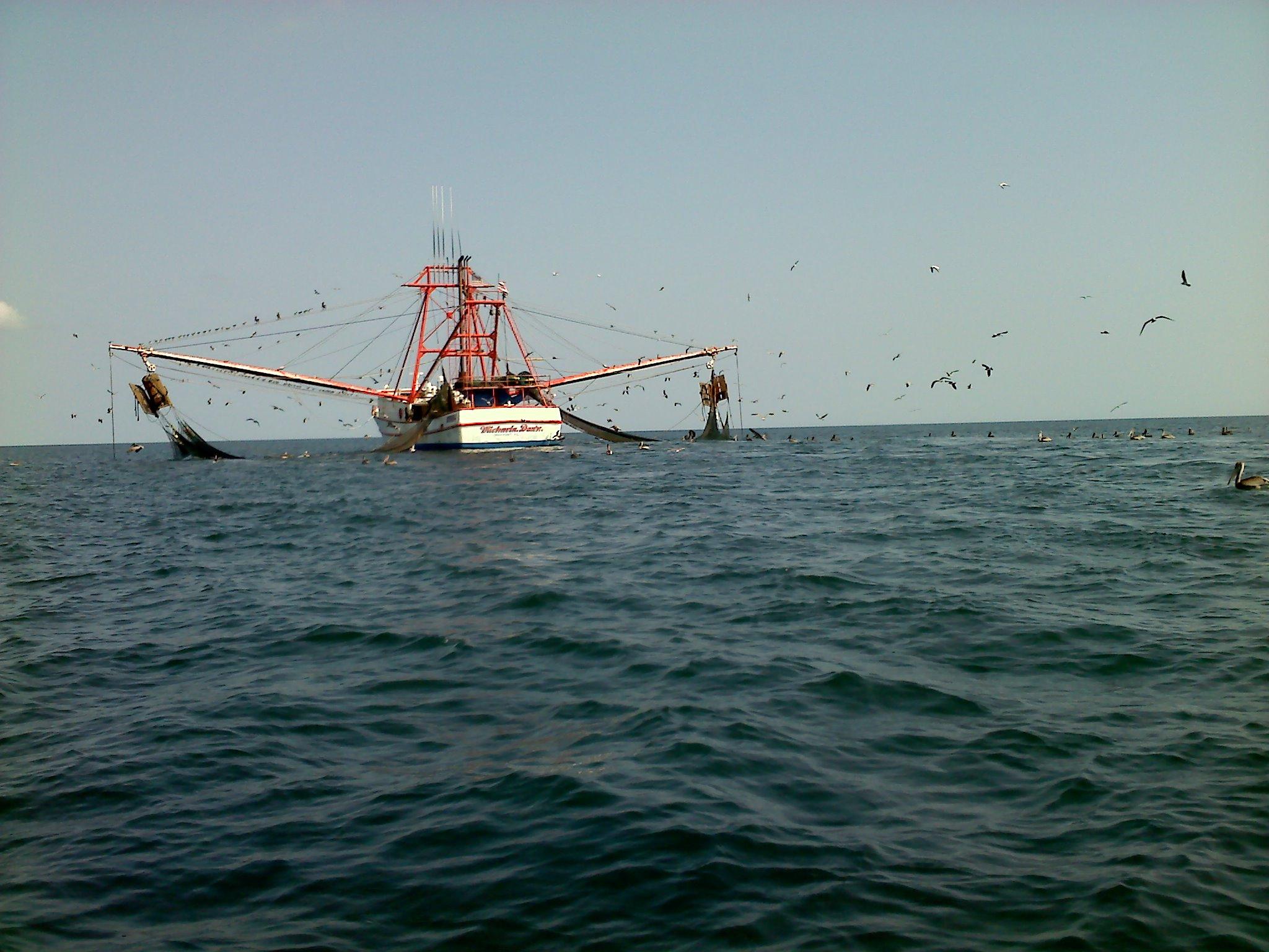 Img 0889 new smyrna beach charter fishing in shore for New smyrna fishing charters