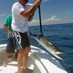 kingfishing new smyrna beach